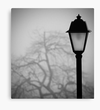 Lamp and Tree. Canvas Print