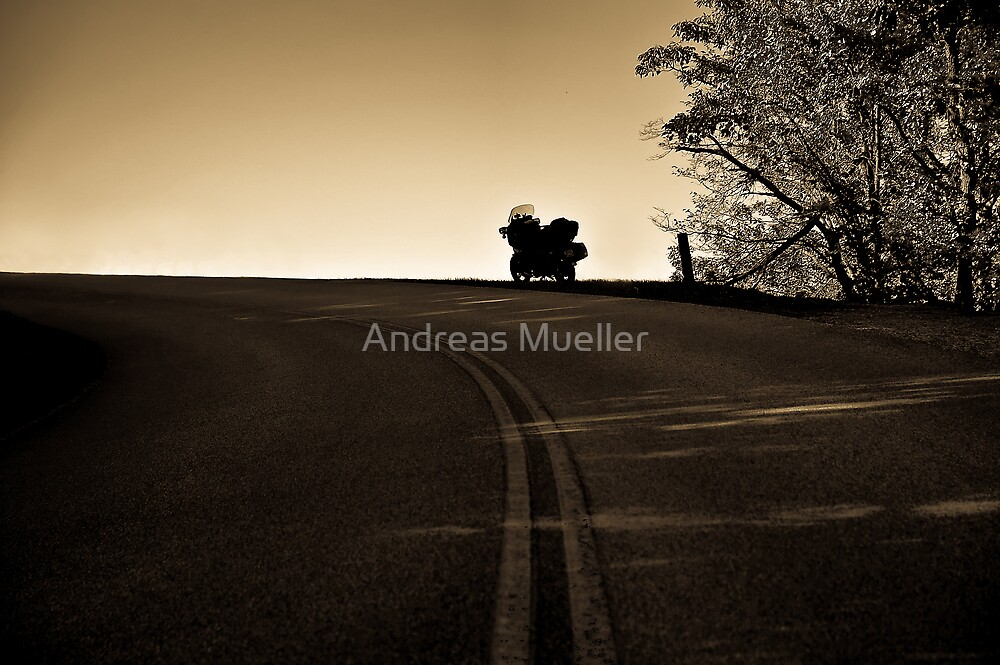 The Lone Road Home by Andreas Mueller