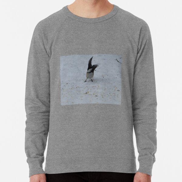 Taking Flight Lightweight Sweatshirt