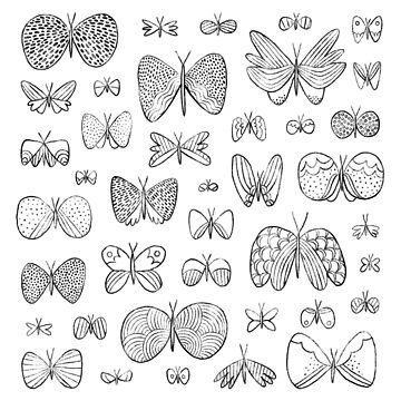 Hand drawn butterflies by stolenpencil