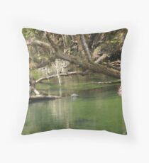 Turtles at Blue Springs Throw Pillow