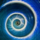 Blue and white spiral shell by JBlaminsky