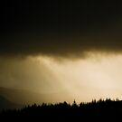Scottish Light by Patrice Mestari