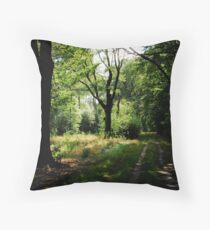 Changing from winter to summer Throw Pillow