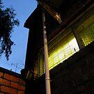Night Lights by vonb