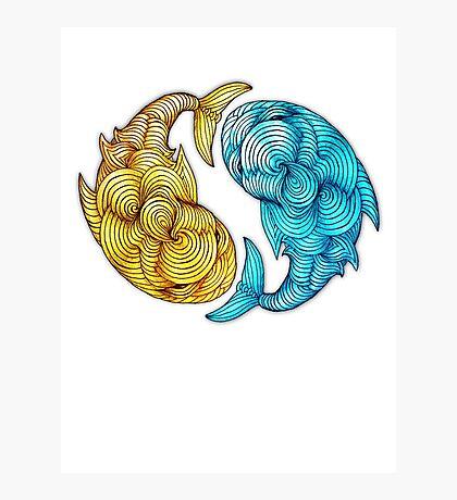 Whale Fish Photographic Print