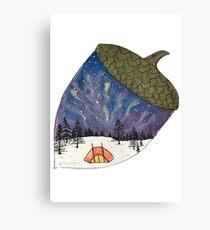 Camping under Aurora Borealis in a Nutshell Canvas Print