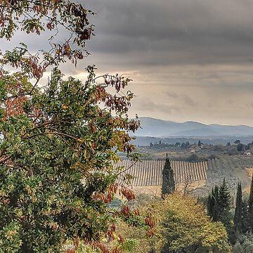 Tuscan Countryside by photorolandi