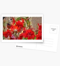 Red Lilies Postcards