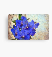 Vandas in Bloom Metal Print