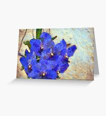 Vandas in Bloom Greeting Card