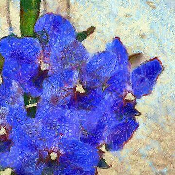 Vandas in Bloom by photorolandi