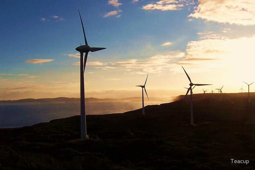Wind Farm by Teacup