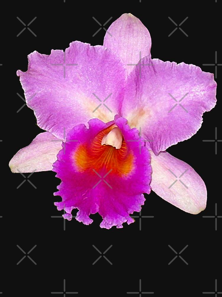 Orchid #7 by photorolandi