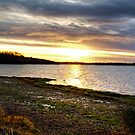 Rutland Water by Mick Smith