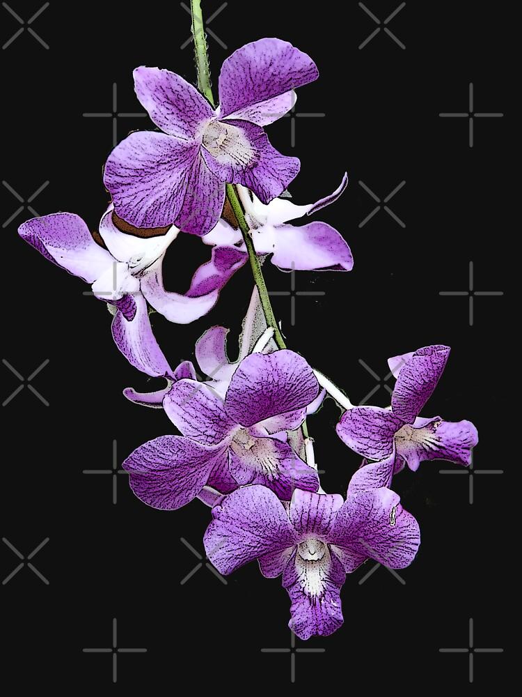 Orchids #2 by photorolandi