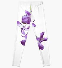 Orchids #2 Leggings