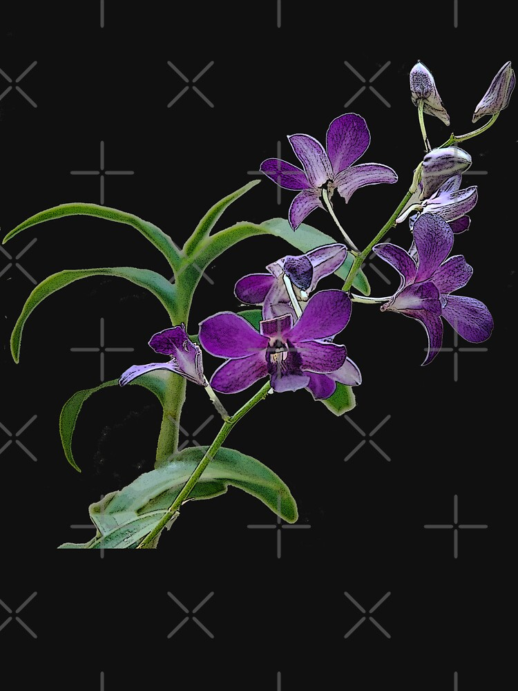 Orchids #1 by photorolandi
