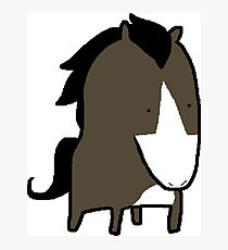 MSPaint Horse Photographic Print