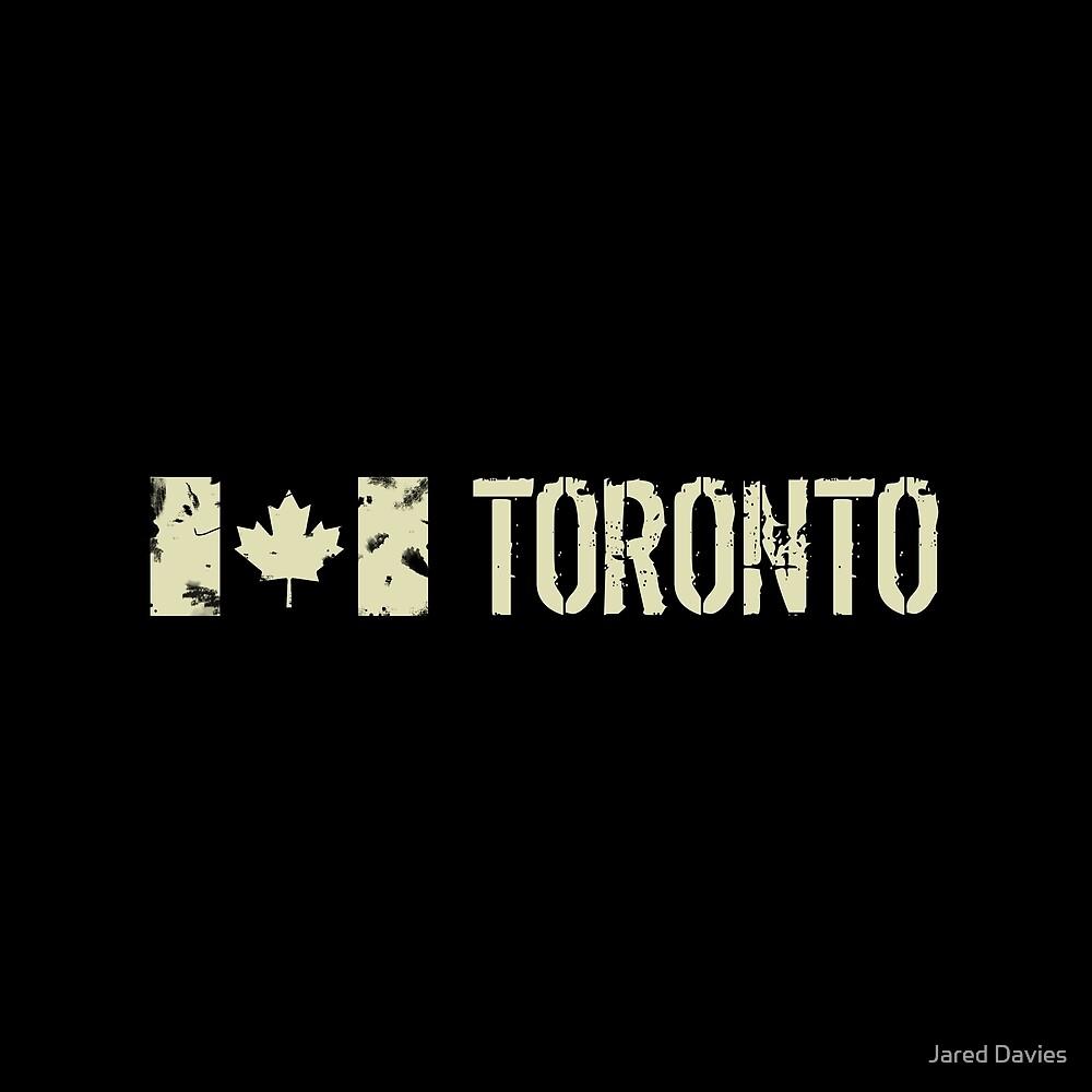 Canadian Flag: Toronto by MilitaryCandA