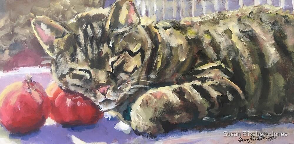 Tomato Purrrree by Susan Elizabeth Jones