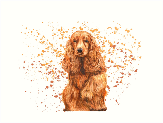 orange dog spaniel by konseva