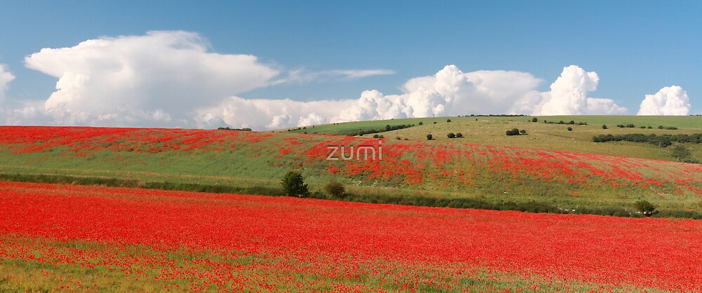 Red hills, rising clouds by zumi
