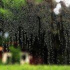 Rain Drops ... by Angelika  Vogel