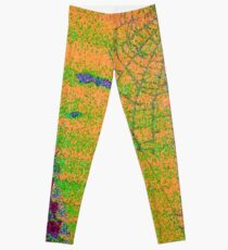 Cobweb colorful Leggings