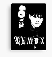 Clan Of Xymox Canvas Print