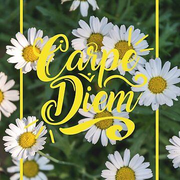 Carpe Diem by roosmarijn98