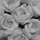 White Roses by WhiteDiamond