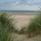 Sand Dune 1 by WhiteDiamond