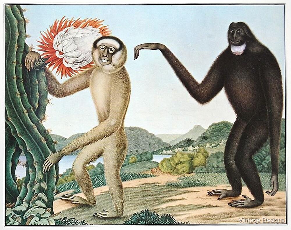 Gibbons illustration by Vintage Designs