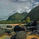 Another beautiful Kauai vista by milton ginos