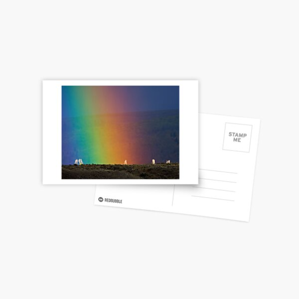 Rainbow Air, Ghost Trees Postcard