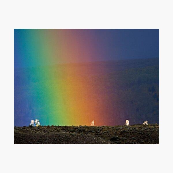 Rainbow Air, Ghost Trees Photographic Print