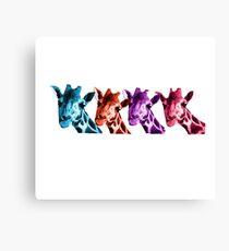 Giraffe Funny Color Heads Shirt Canvas Print