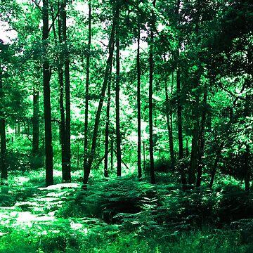 Nature Walk by YukilapinBN