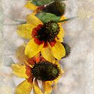 Garden Volunteers by Carolyn Staut