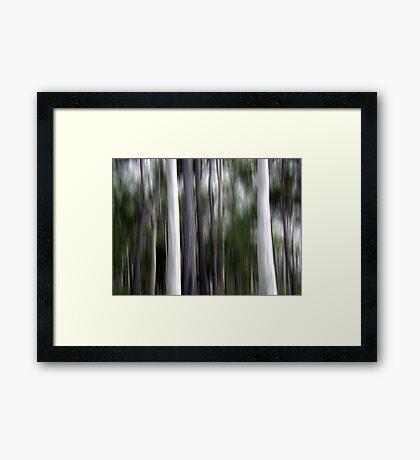 Ghost Gums Framed Print
