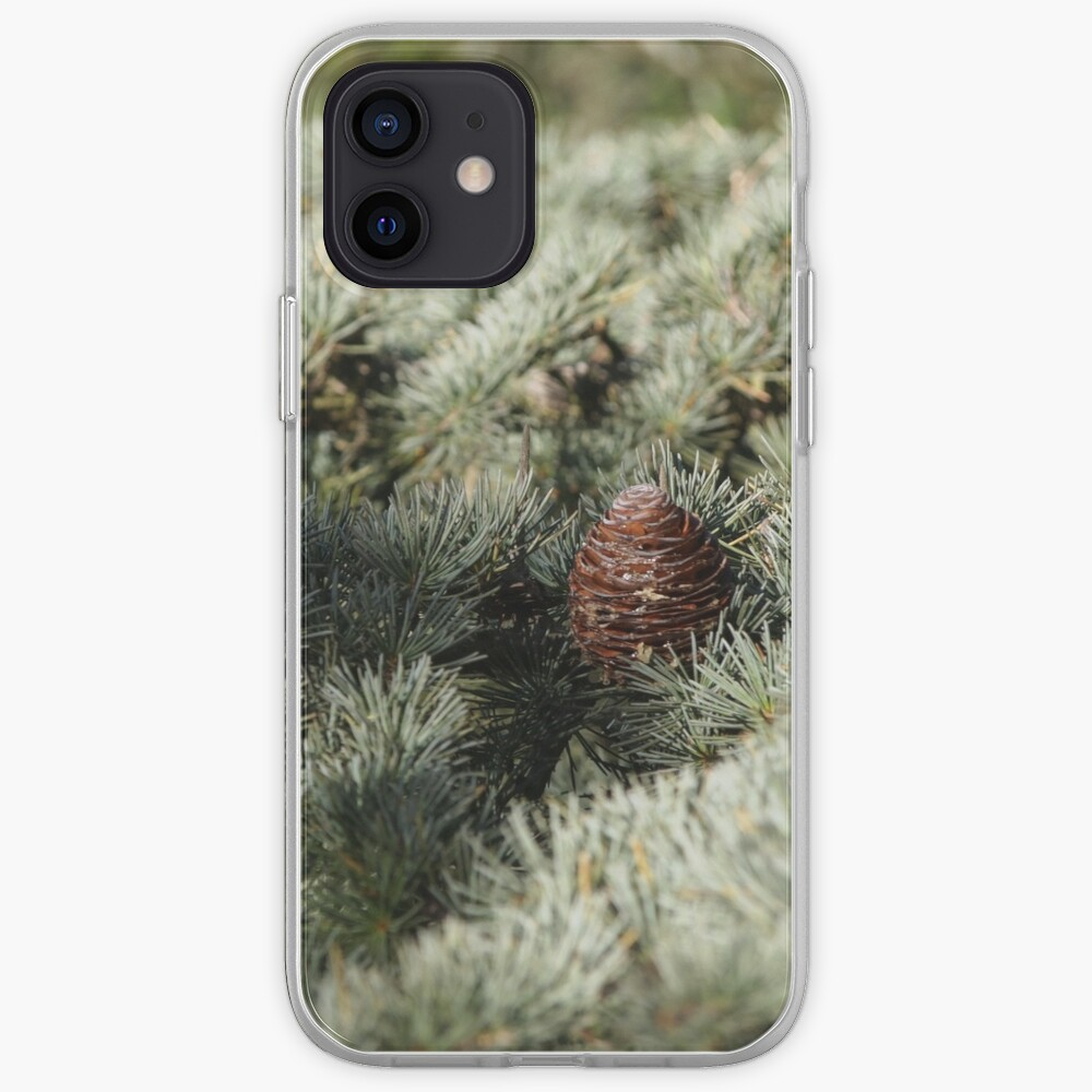 In the woods - Fir Tree iPhone Case & Cover
