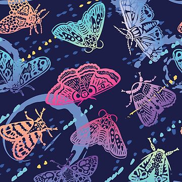 Colorful moths with splashes by PenguinHouse