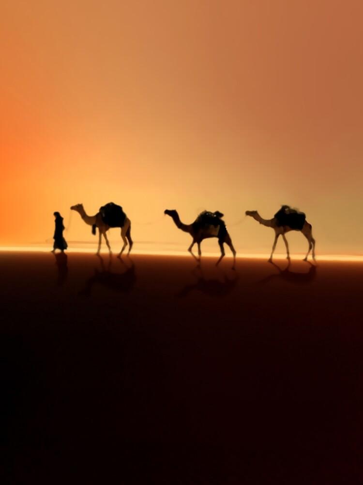 Desert Mirage by valzart