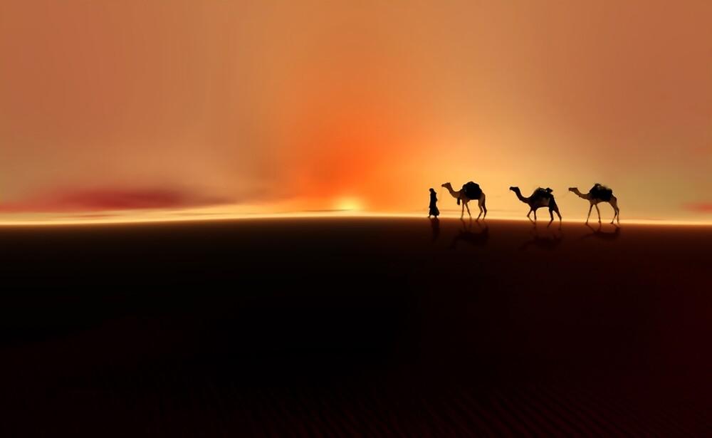 Desert Mirage by Valerie Anne Kelly