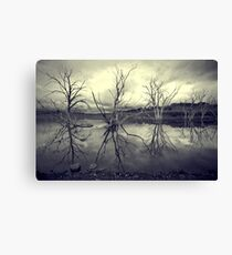 Your Crazy Weird Dream Canvas Print