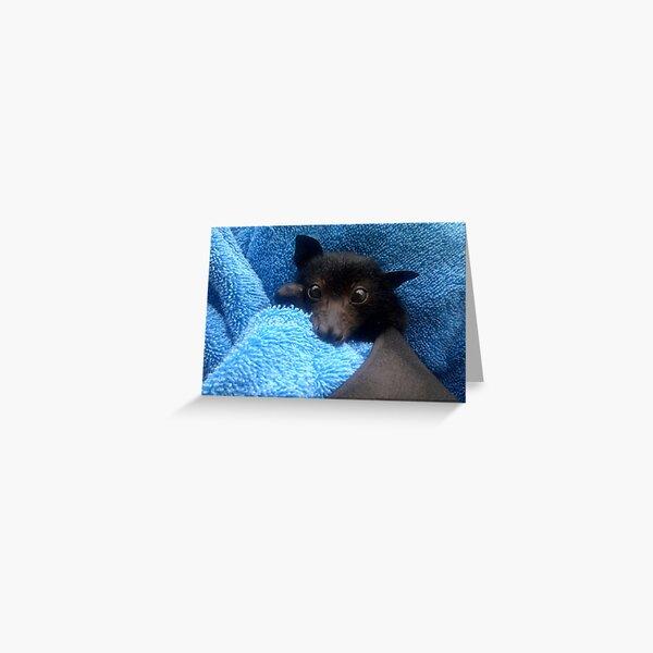 Baby Bat Cruz In Blue. Greeting Card