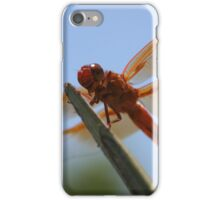 Smiling Dragonfly Iphone Case iPhone Case/Skin