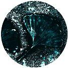 Ginkgo Moon Leaf by Ka L-O-K   Graphic Arts