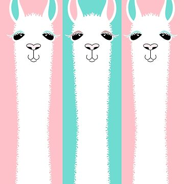 THREE LLAMA ON PINK AND BLUE by jgevans
